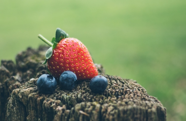 Remember to Eat your Fruits!: The Benefits of Blueberries on Cognitive Function