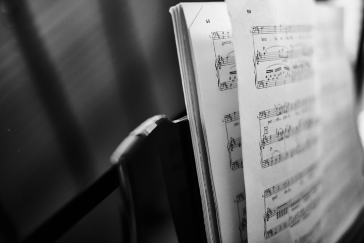 How Music and Poetry Create Empathy