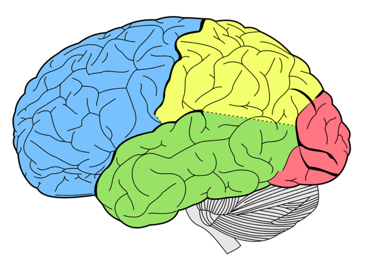 Neuro Emotional Technique: A New Therapy for Traumatic Memories