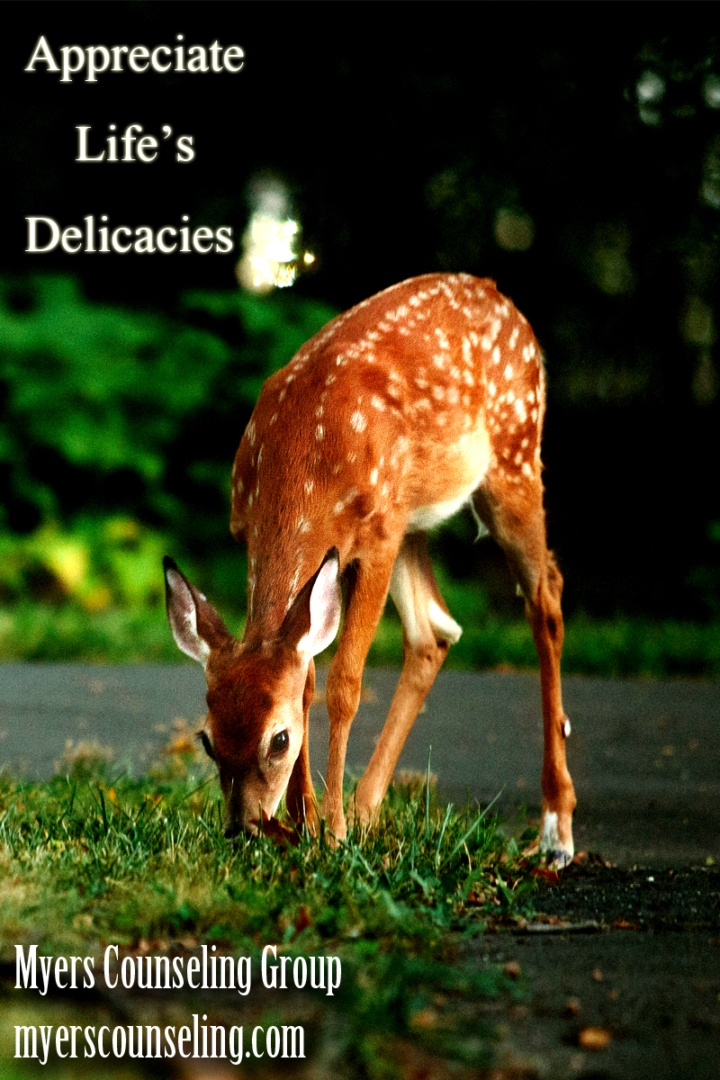 Inspirational Quote of the Day: Delicate