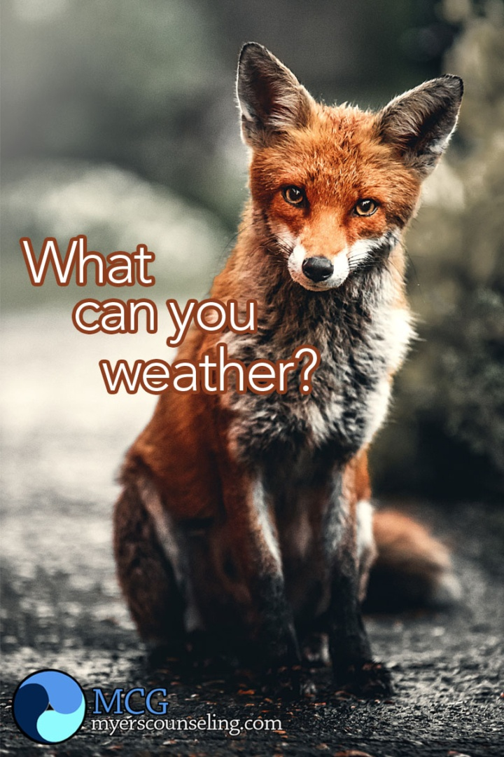 Inspirational Quote of the Day: Weather