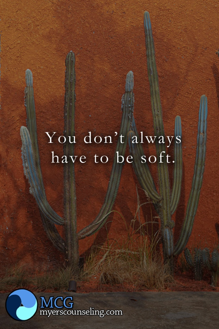 Inspirational Quote of the Day: Not Always Soft
