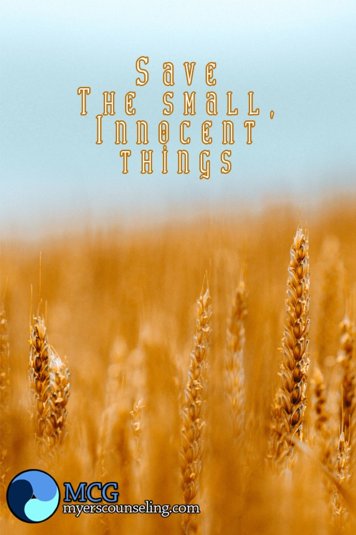 Inspirational Quote of the Day: Small Things