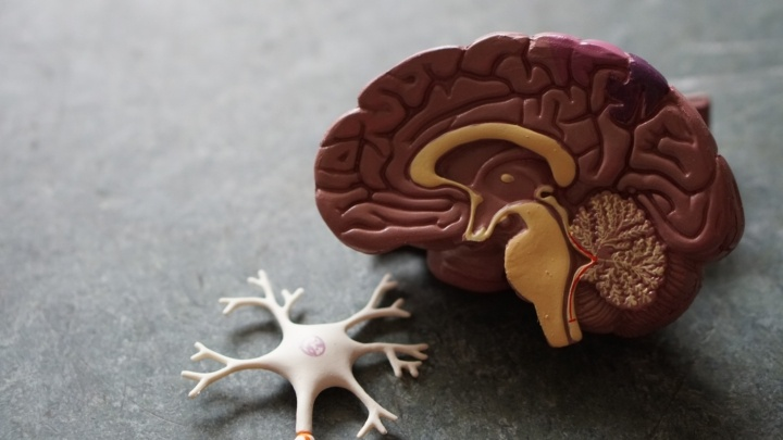 How Inflammation Impacts Motivation, Promotes Mental Illness